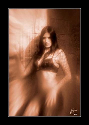 2012-03-31 gothique fanny 0963 sepia cadre